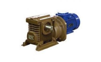 ЦЧ-100/МЦЧ-100 Мотор-редуктор цилиндро-червячный двухступенчатый